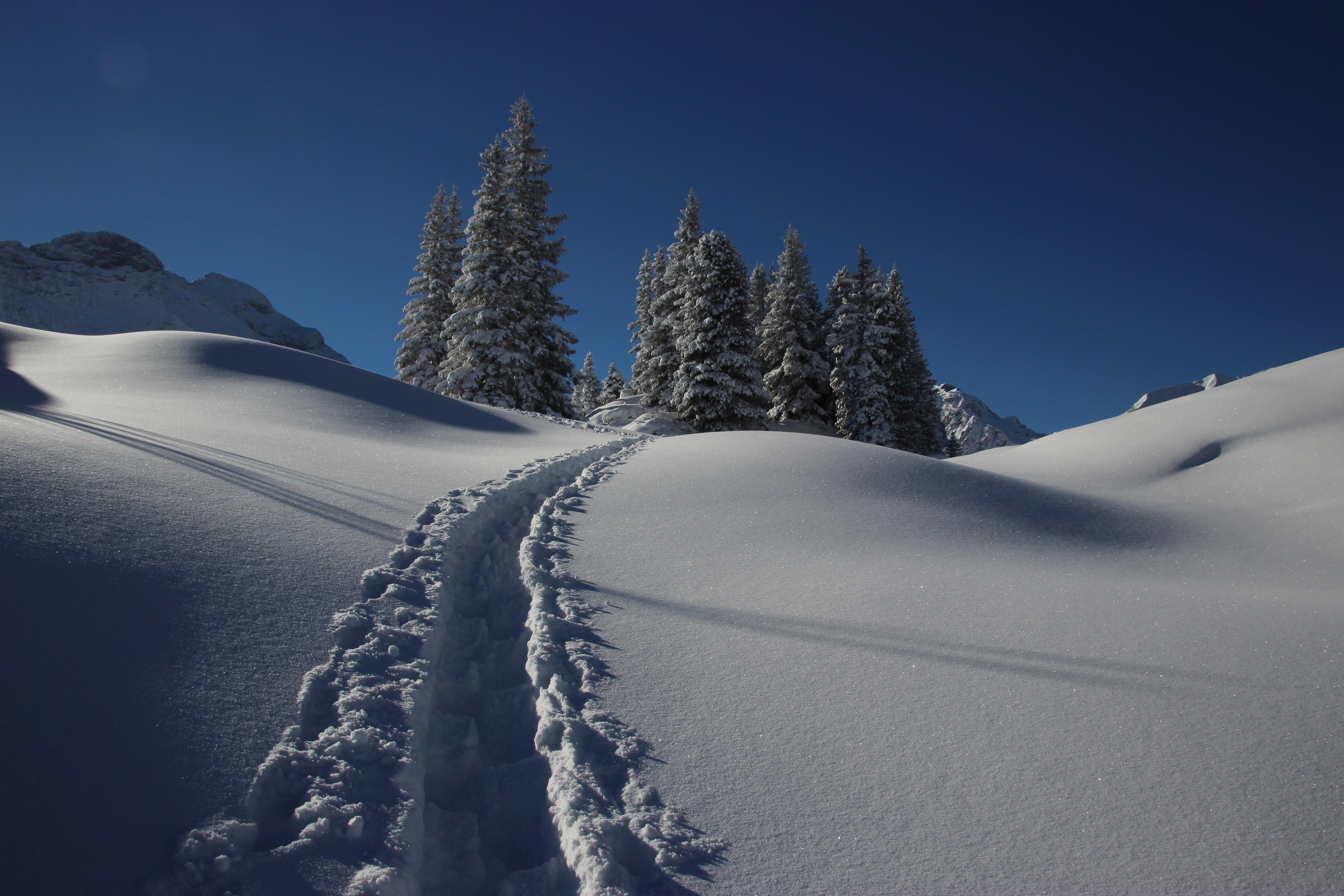Schneeschuhwanderung/caspolata